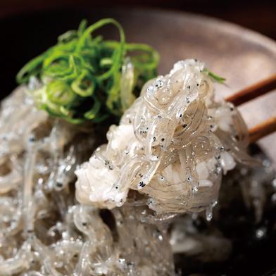 【獲れたてを瞬間凍結】生シラス 100g×5パック 魚介類(しらす) 通販