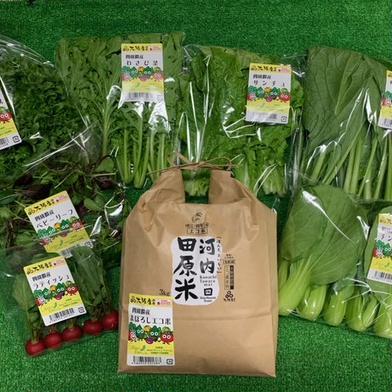 砂栽培野菜たちとまぼろしのエコ米★ 食材ジャンル: 野菜 > セット・詰め合わせ 通販