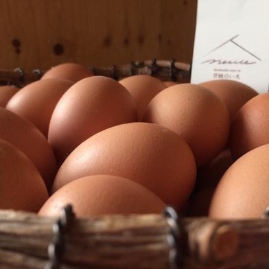 【北海道発西日本向け・送料込】平飼い鶏の有精卵「ぽんあびらん」30個セット【送り先が中部・北陸地方以西の方】 30個 卵 通販
