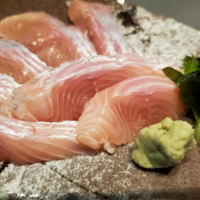 天然ビワマス 1尾 1kg~(大) 魚介類(その他魚介) 通販