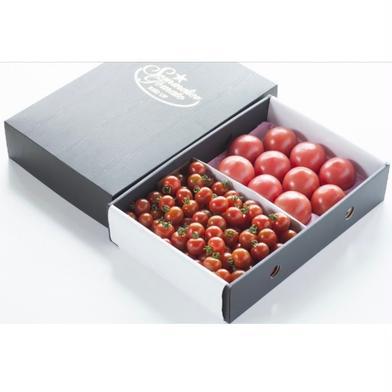 ⑦ソムリエトマト 1.3kgとソムリエミニトマト ダイヤ1kgのセット トマト1.3kg ダイヤ1kg 野菜(トマト) 通販