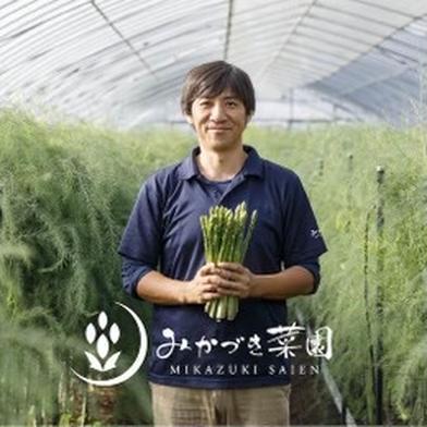 【数量限定❗️】甘みぎっしりアスパラをご堪能ください 1kg 野菜(アスパラガス) 通販