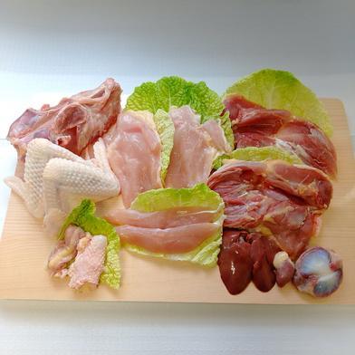みやざき地頭鶏 メス1羽セット 1.7kg~2.0kg(鶏ガラ込み重量) 宮崎県 通販