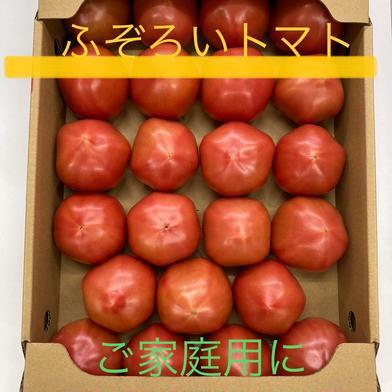 山口秋穂トマト ふぞろい(4kg箱満杯) ご家庭用に! 山口秋穂トマト(4kg箱満杯) 1箱 野菜(トマト) 通販