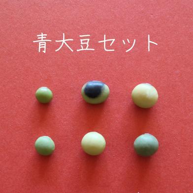 丹波篠山めぶき農房 在来種の青大豆セット 6種類から3種類選んでください 各200g入り 3種類を1袋ずつ 野菜(豆類) 通販