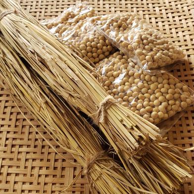 藁苞納豆を作ろう❗セット 大豆×3 藁苞×3   80サイズ 京都府 通販