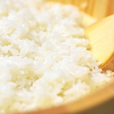 令和2年度産新米🌟キヌヒカリ玄米3kg🌾淡路島からの新米キヌヒカリ〜玄米 キヌヒカリ玄米3kg 兵庫県 通販