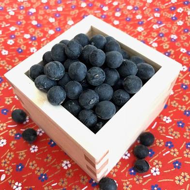 京都丹波黒大豆 250g×2袋 500g 野菜(豆類) 通販