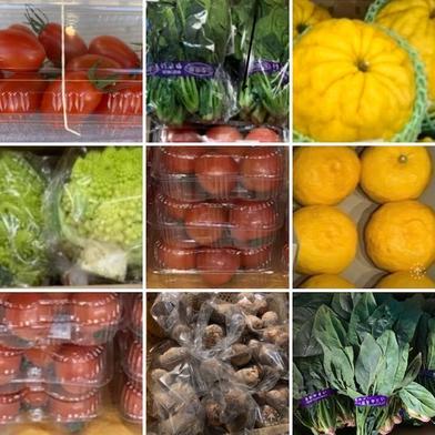 山梨県産野菜 たっぷり詰合せ 旬果ふるさと農園