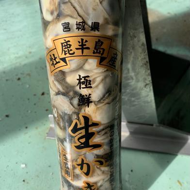 【加熱用】宮城県産濃厚生牡蠣 500 g 宮城県 通販