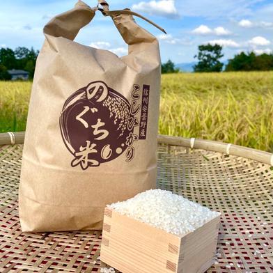 のぐちファーム安曇野産☆新米☆ 令和2年コシヒカリ5キロ✖️2袋と10キロ✖️1袋 20キロ のぐちファーム
