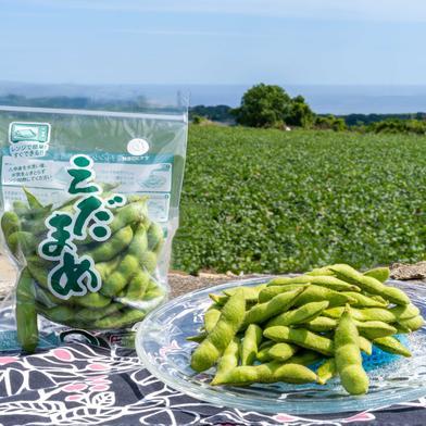 春の国産『生』枝豆は沖縄の気候ならでは!【180g×5袋】 900g 野菜(豆類) 通販