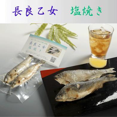 長良乙女の塩焼き(4パックセット) 4パック(各2尾入り) (有)美濃養魚場