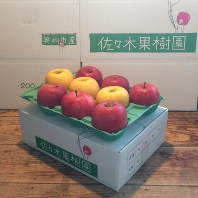 【お試し小玉】サンふじ&シナノゴールド3kg【スマートフレッシュ】 約3kg(10~12玉) 果物や野菜などの宅配食材通販産地直送アウル