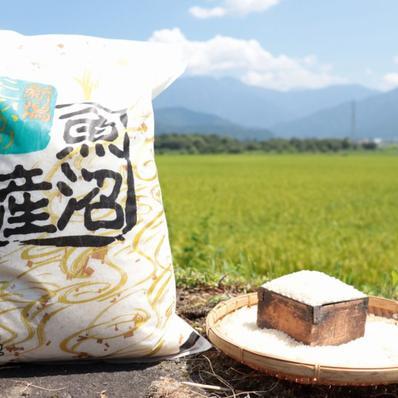 うちやま農園のお米 5㎏(精米) 5㎏ キーワード: 米 通販
