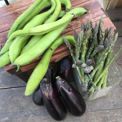 おまかせください🥗野菜詰め合わせ 2キロ位 キーワード: アスパラガス 通販