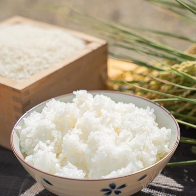 令和2年度産合鴨農法はぜ掛け米(精米)10kg 10kg キーワード: 数量限定 通販