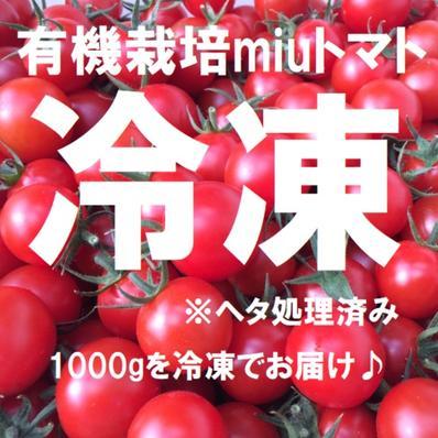 【冷凍1000g】名古屋の有機栽培ミニトマト【飯田農園】miuトマト冷凍1000g 【冷凍】1000g キーワード: 飯田農園 通販