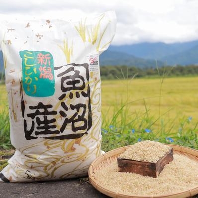 うちやま農園のお米 5㎏(玄米) 5㎏ キーワード: 米 通販