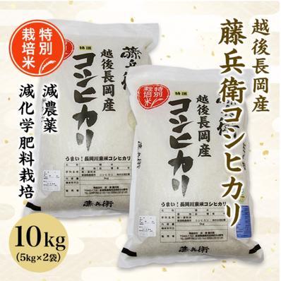 特別栽培米 藤兵衛コシヒカリ 10kg(5kg×2袋) 10kg キーワード: 米 通販