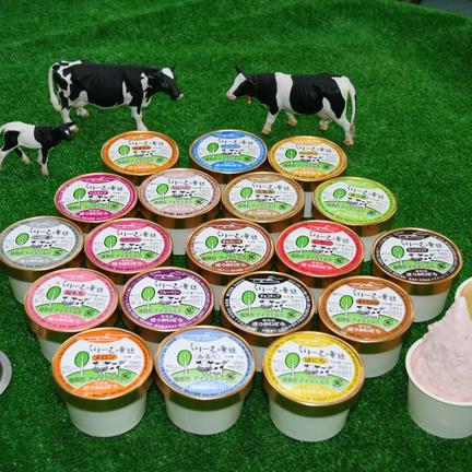 くりーむ童話 アイスクリーム全種類20個セット お中元 2.2kg OWLで地域の飲食店を盛り上げよう