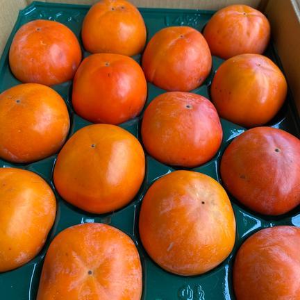 ご家庭用 富有柿Lサイズ  2.5kg 果物や野菜などのお取り寄せ宅配食材通販産地直送アウル