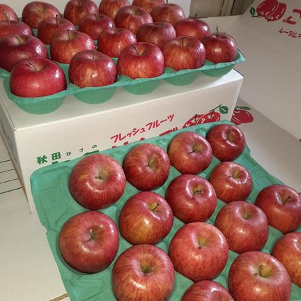 大特価! サンふじ 10kg  10kg(36~40玉入) 果物や野菜などのお取り寄せ宅配食材通販産地直送アウル