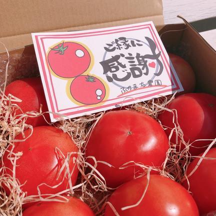 (訳あり)旨味がぎゅっと詰まった桃太郎トマト 2キロ 果物や野菜などのお取り寄せ宅配食材通販産地直送アウル