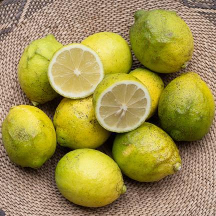 傷ありレモン(B品)2kg 2kg(約20個) 果物や野菜などのお取り寄せ宅配食材通販産地直送アウル
