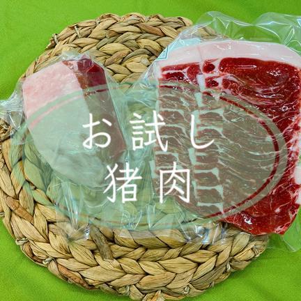 ジビエ猪之国 ジビエ初心者歓迎!猪肉お試しセット400g(お手軽レシピ付き) 猪肉400g(ブロック、スライス各200g)