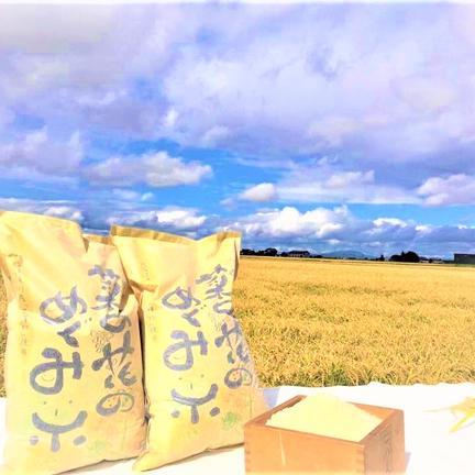 ショクラク 生産者限定/北海道産菜の花めぐみ米5kg  5kg