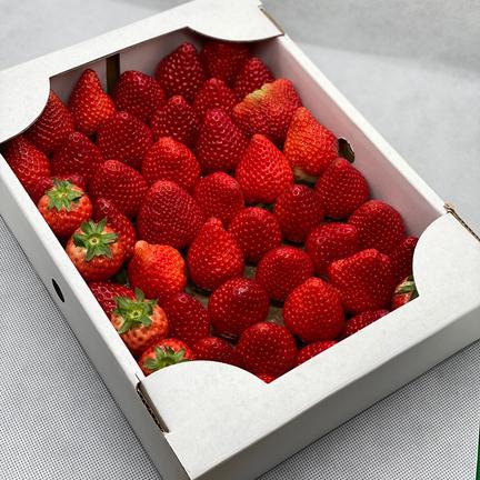 規格外いちごさん2箱(潰れが気にならない方限定) 約2kg(箱梱包重さ込み) 果物や野菜などのお取り寄せ宅配食材通販産地直送アウル