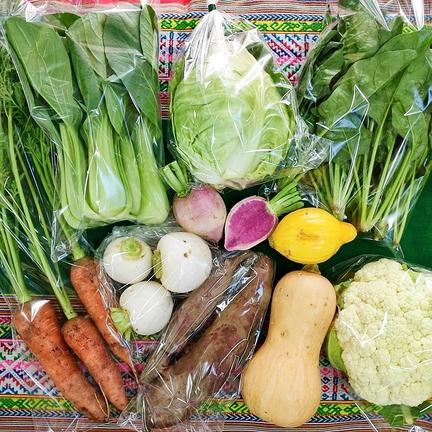 Pachamama 農園自慢の情熱野菜セット9品目☆パチャママ農園 お歳暮 野菜9品目