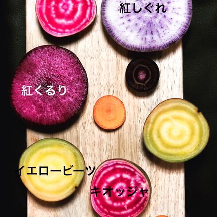ショクラク お試し/北海道産越冬(全て無農薬)野菜詰め合わせ 6kg程度