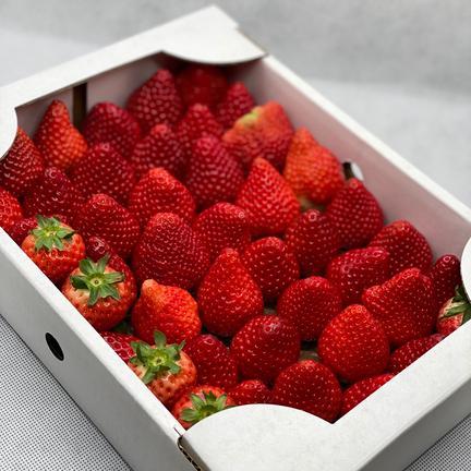規格外いちごさん4kg(箱梱包重さ込み)潰れが気にならない方限定♡ 4kg(箱梱包重さ込み) 果物や野菜などのお取り寄せ宅配食材通販産地直送アウル