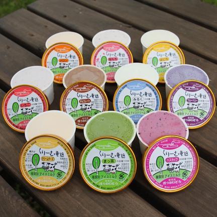 くりーむ童話 アイスクリーム 10個セット お中元 1.1kg OWLで地域の飲食店を盛り上げよう