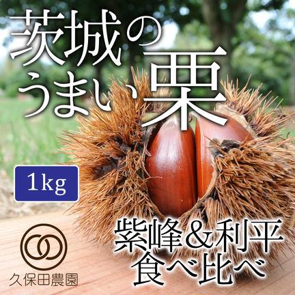 茨城のうまい栗 紫峰&利平食べ比べ 1kg(各500g) 約1kg(各500g/各約18個) 果物や野菜などのお取り寄せ宅配食材通販産地直送アウル