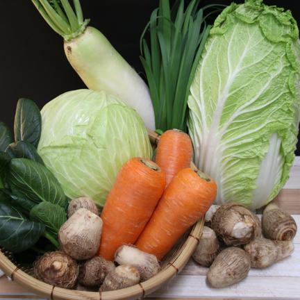 栃木県産 道の駅もてぎの旬の野菜セット 8~10品目 果物や野菜などのお取り寄せ宅配食材通販産地直送アウル