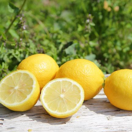 主井農園 主井農園 国産レモン2k(お試し用) 2k