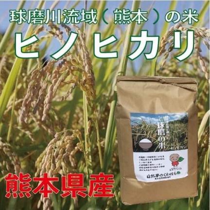 自然薯のくわはら 令和2年【オーダー後に精米】熊本県産 球磨川流域の米(ヒノヒカリ)白米10kg 10kg