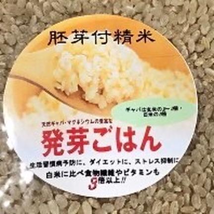 米と野菜のkawamura 胚芽付き精米❕ 令和2年産ひとめぼれ 500g