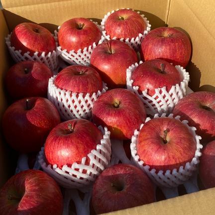 おいしそうな自宅用 約5kg 果物や野菜などの宅配食材通販産地直送アウル
