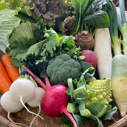 戸張農園おまかせ野菜セット 10〜12種類 100サイズ 5キロくらい 果物や野菜などの宅配食材通販産地直送アウル