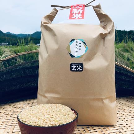 ふじもとファーム 新米 瀬戸内讃岐 令和2年産コシヒカリ100%玄米5キロ 紙袋入り 玄米 5kg
