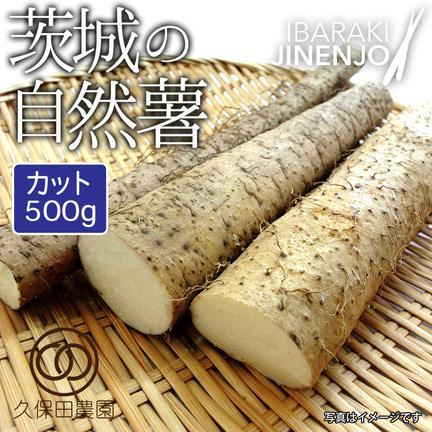 久保田農園 茨城の自然薯 カット 約500g 約500g