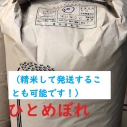 米と野菜のkawamura 【令和2年産】お買い得!!玄米30kg 30kg
