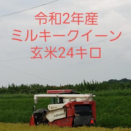 たっちゃん 特別栽培米ミルキークィーン玄米24キロ ミルキークィーン玄米24キロ