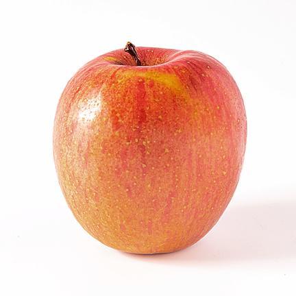 【家庭用③】濃厚サンふじ 約3キロ 果物や野菜などの宅配食材通販産地直送アウル