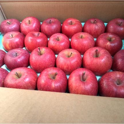 美味しいものをちょっとづつ♪サンふじ食べきりサイズ 約4.5㎏20~22玉 果物や野菜などの宅配食材通販産地直送アウル