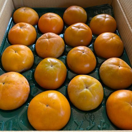 ご家庭用富有柿 Sサイズ16個セット 2.5kg 果物や野菜などの宅配食材通販産地直送アウル